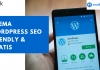 Tema WordPress SEO Friendly