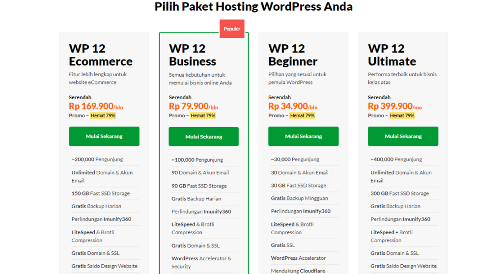 Chinese New Year Big Sale : Paket WP V12