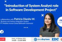 EDC System Analyst